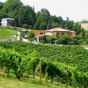 Foto Agriturismo Borgo delle Vigne - Az. Gaggioli